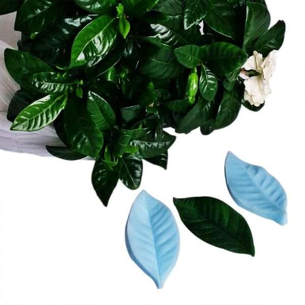 """Veiner """"Gardenie Blatt L"""" (Gardenie leaf L ) ca.4,5 x 9,2cm"""