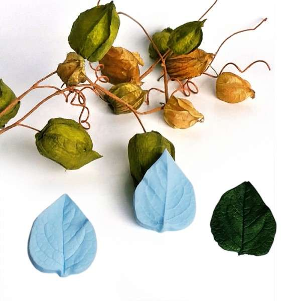 "Veiner ""Lampionblume Blatt"" ca. 5 x 6,5 cm (Chinese Latern, Leaf)"