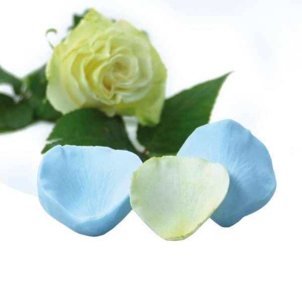 """Veiner """"Rose"""" Blütenblatt ca.7cm ( Rose Petal )"""
