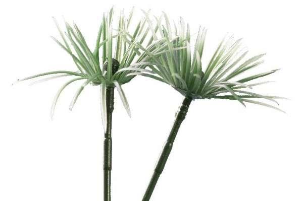 Tortendekoration Gras