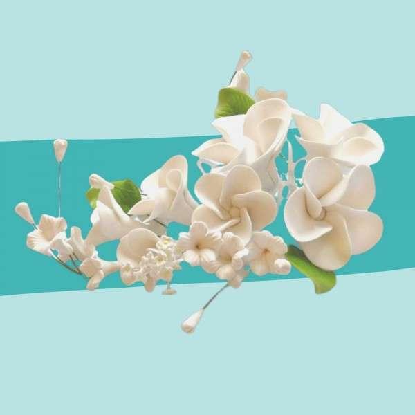 Zuckerblumenbouquet Frangipani Weiß Vorschaubild